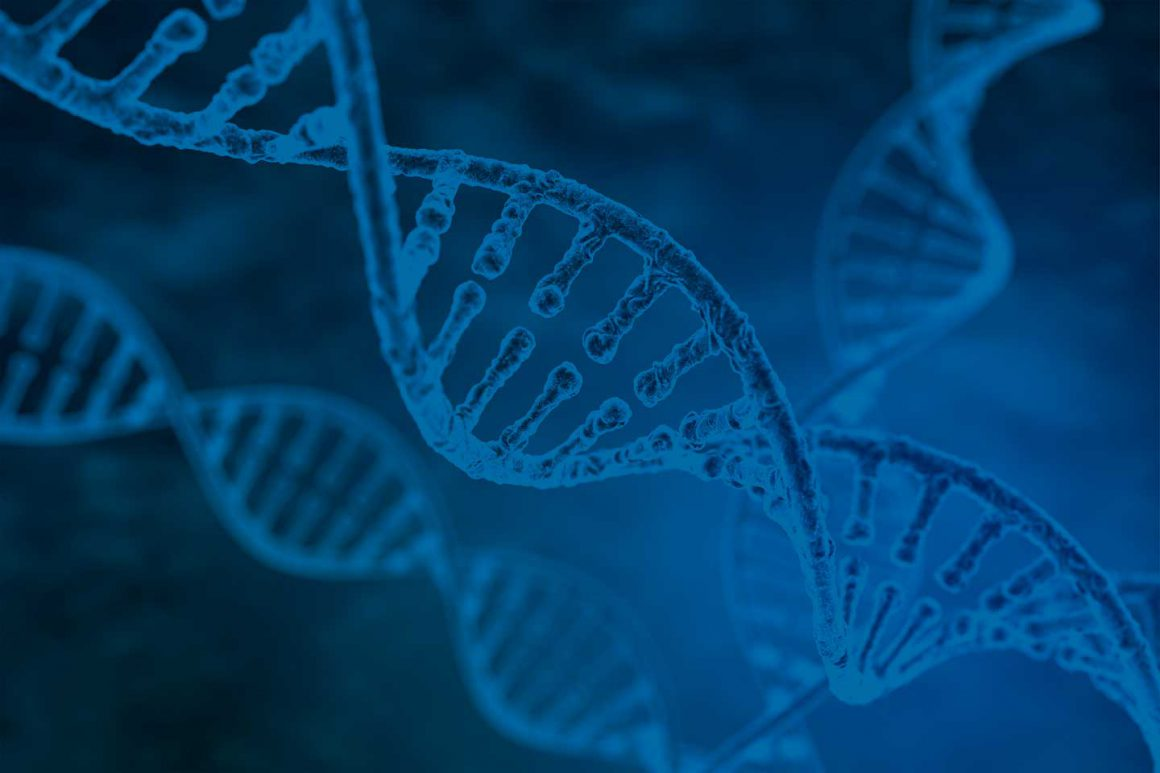 Introduction to Epigenetics