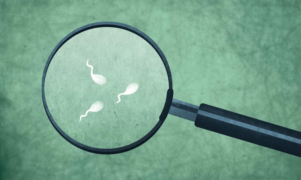Sperm Epigenetics and Male Infertility